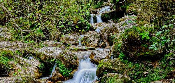 آبشار کبودوال گلستان؛ تنها آبشار خزه ای ایران، عکس