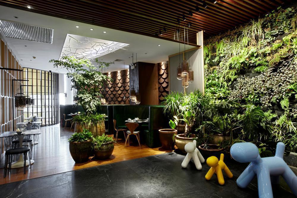 گل های آپارتمانی و نحوه نگهداری 8 مورد از مناسبترین آنهامعرفی زیباترین گل های آپارتمانی ماندگار
